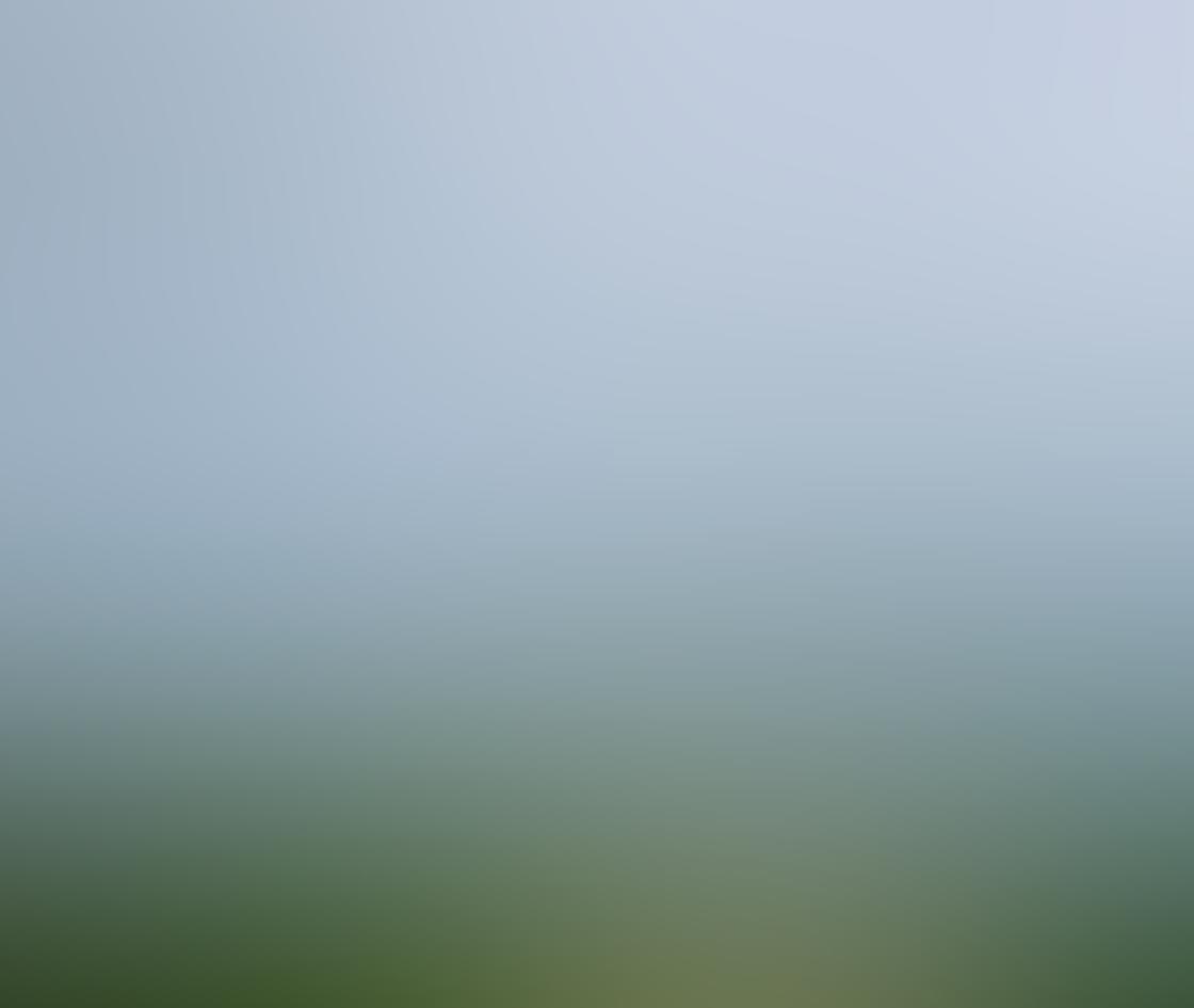 Stark Landscape iPhone Photos 5