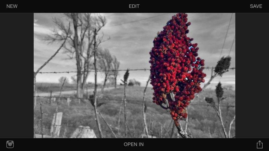Exposure App iPhone Photos 15 no script