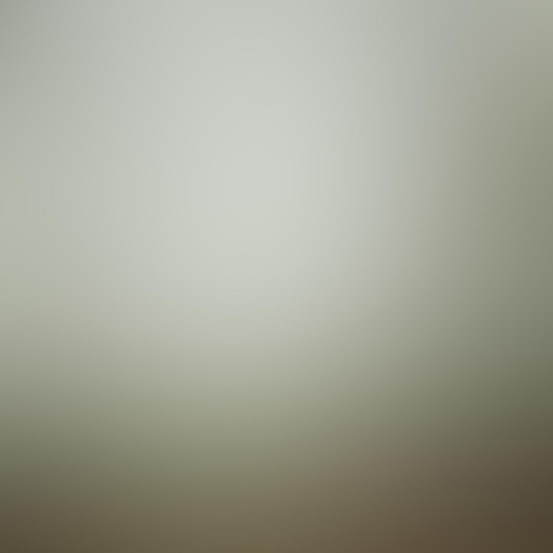 Mist Fog iPhone Photos 18