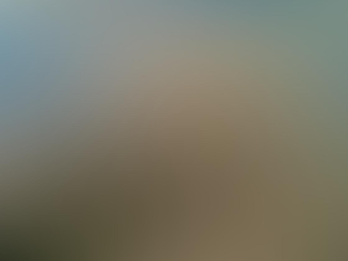 Landscape iPhone Photos 18